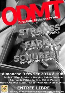 affiche concert ODMT 090214